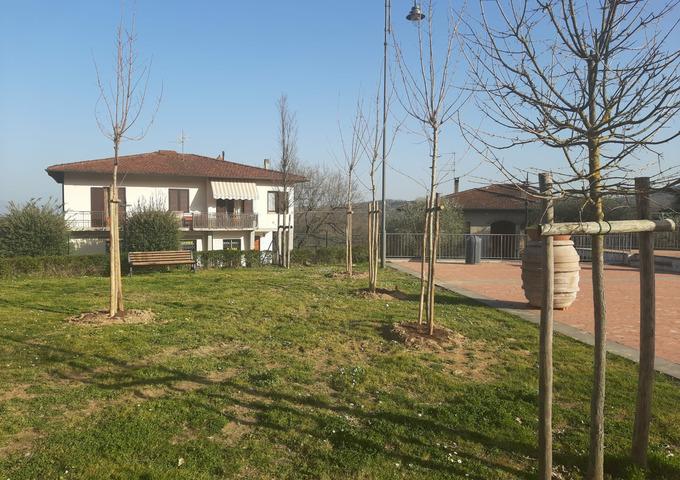 """""""E' ora di piantarla! Un albero per la vita""""  Un grande successo a Cavriglia. Oltre 100 le piante già messe a dimora, nuove essenze a disposizione per chi vorrà donare un albero ai propri cari"""